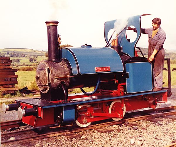 Hand built steam loco
