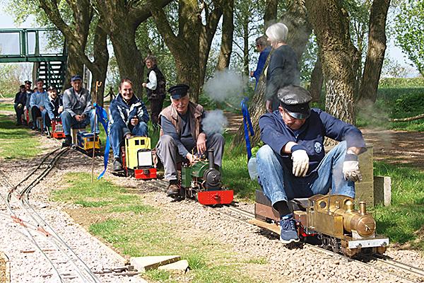 Narrow gauge steam trains